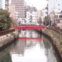 遠くから見る新田橋