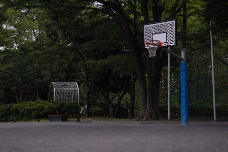 猿江公園バスケットゴール