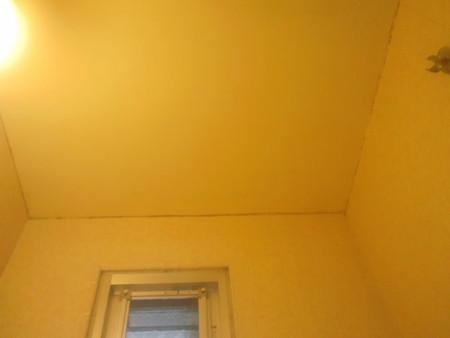 浴室天井カビ落とし